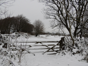 parracombe in snow