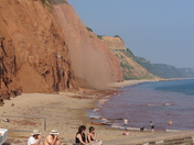 Mud slide Sidmouth Beach