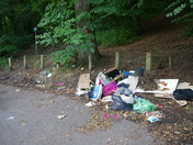 Fly tipping along Toll Road.