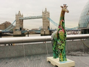Painted Giraffe sculptures come to the banks of the Thames