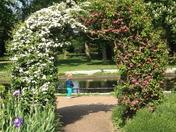 Pretty arch in Valentine Mansion Rose garden