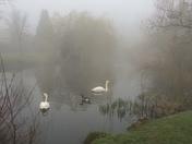 Foggy Hornchurch