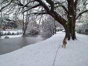 Heavy snow fall in Hornchurch