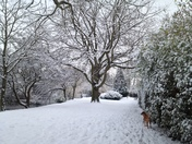 Heavy snow fall in Hornchurch