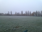 Frosty morning at Hylands Park, Hornchurch