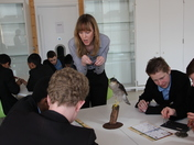 Eastbrook Students visit the Horniman Science Museum and study A Barn Owl's Lu