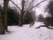 Snow in Barking