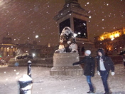 Chilly lion in Trafalgar Square