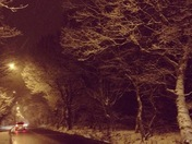 Snowy scenes in N.E. London