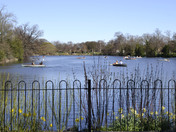 Spring Sunshine brings out the boats on the lake in Valentines Park