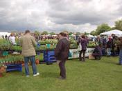 Redbridge Green Fair
