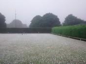 Hail summer!