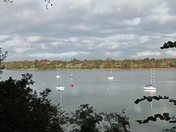 A walk along the river Orwell from Pin Mill