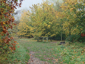 Autumn at Flatford