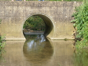 Rosemary Bridge Tuddenham