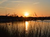 Sunset At Martlesham Creek