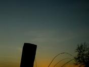 Silhouettes of Kessingland plus one bird