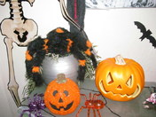 Halloween hell at home