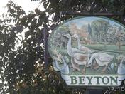 The Beyton Geese