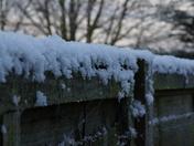 A frosty fence