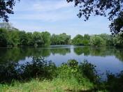 View from Flatford bird hide
