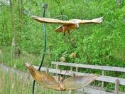 Marsh Harrier Sculpture