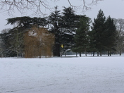 Stisted China bridge and golf course in the snow