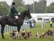 Suffolk Show, Horse and Hounds