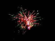 RED AND GREEN BLOOM FIREWORK