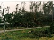Hurricane 1987