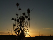 Yet another Felixstowe sunset