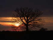 Another Suffolk Sunset :)