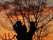 Felixstowe Sunset :)