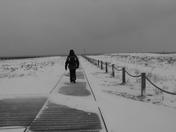 Felixsnow - Landguard Common