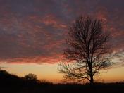 Bramford sunset