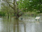 Floods at Needham Lake