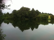 Trimley fishing lake