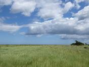 Morston Marshes