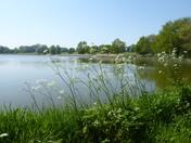 Sunny Blickling Lake