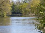 Hoveton Garden Lake