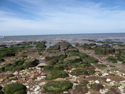 Carrstone Formations at Hunstanton