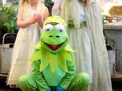 Frog and Princess at Dereham memorial Hall