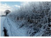 Wroxham in winter