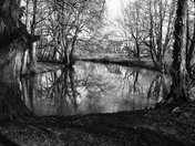 The Little Ouse, Thetford (Part 2)