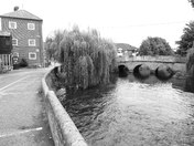 On The River Wensum