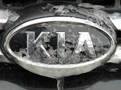 Iced Kia