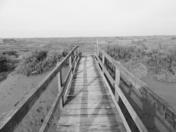 Wooden Bridge On Stiffkey Marsh