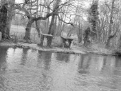 River Wensum At Lyng