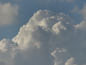 CUMULUS CLOUDS seen  AT  7.30 from Broom Avenue