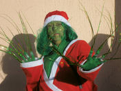 The Grinch in Lowestoft